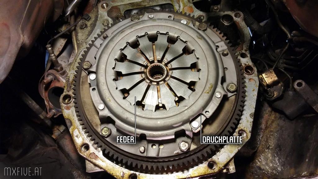 MX-5 Kupplung in montiertem Zustand